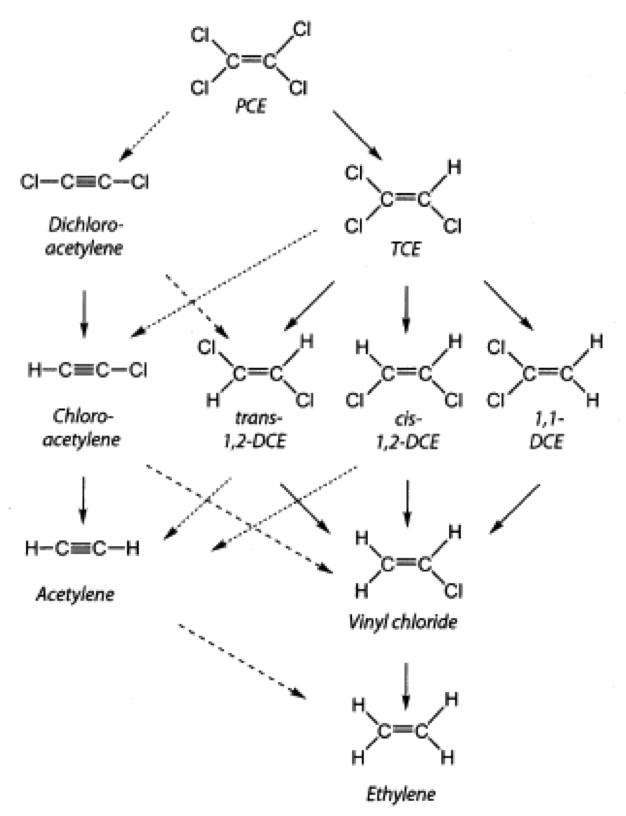 Reduktív deklorináció, hidrogenolízis (folytonos nyíl), β-elimináció (pontozott nyíl) PCE=tetraklór-etilén, TCE=triklór-etilén, DCE=diklór-etilén